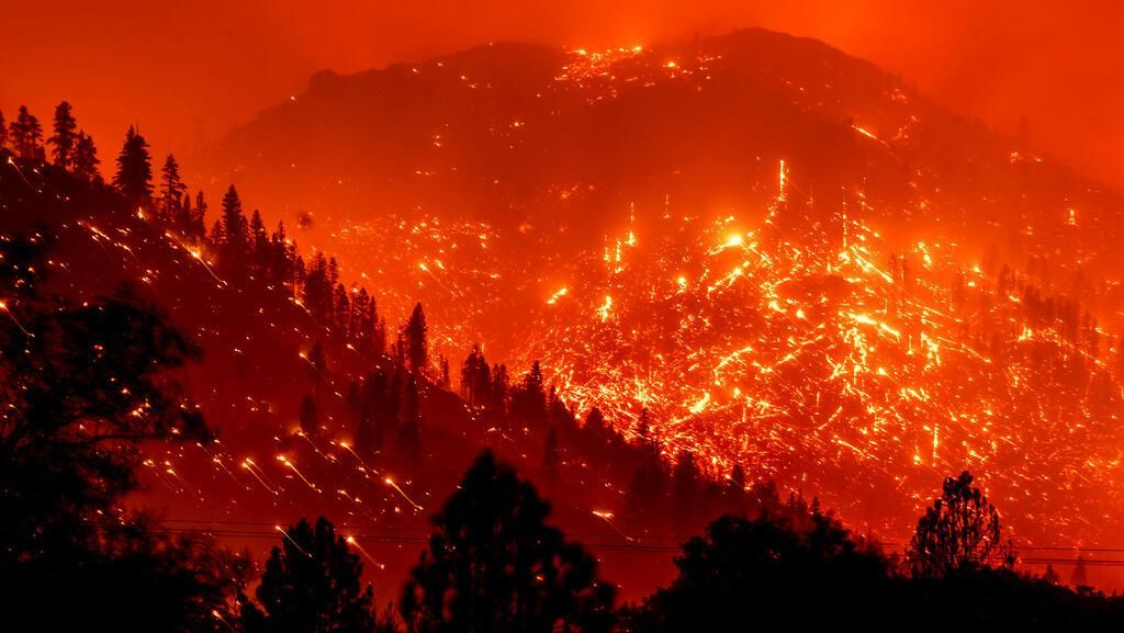 Sempat Mereda, Kebakaran Hutan di California Kembali Ganas