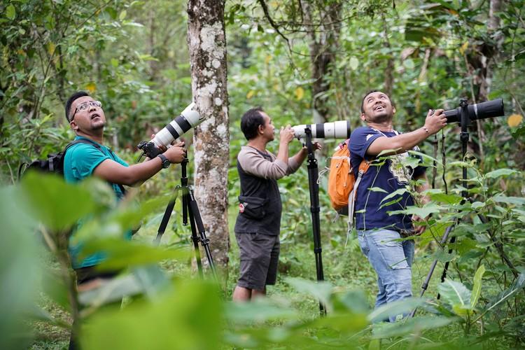 Hobi memotret sangat menyenangkan. Salah satunya memotret hewan liar seperti burung yang ada di alam bebas di Desa jatimulyo, Kulon Progo, Yogyakarta.
