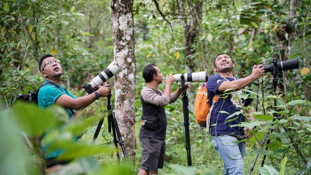 Menyalurkan Hobi Fotografi di Desa Ramah Burung Kulon Progo