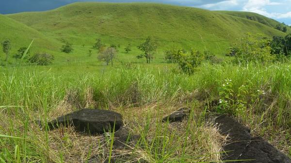 Penelitian yang dilakukan Balai Arkeologi Papua di Situs Khulutiyauw, Kampung Abar, Distrik Ebungfauw, Kabupaten Jayapura berhasil menemukan jalan arwah. Jalan arwah merupakan peninggalan dari masa megalitik. (Hari Suroto/Istimewa)