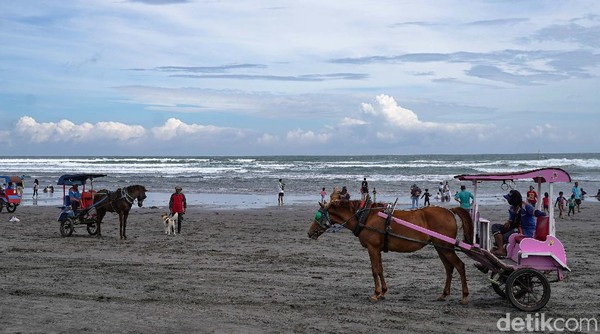 Meski ditegur petugas, namun tidak membuat mereka bergembing meninggalkan objek wisata Pantai Parangtritis.