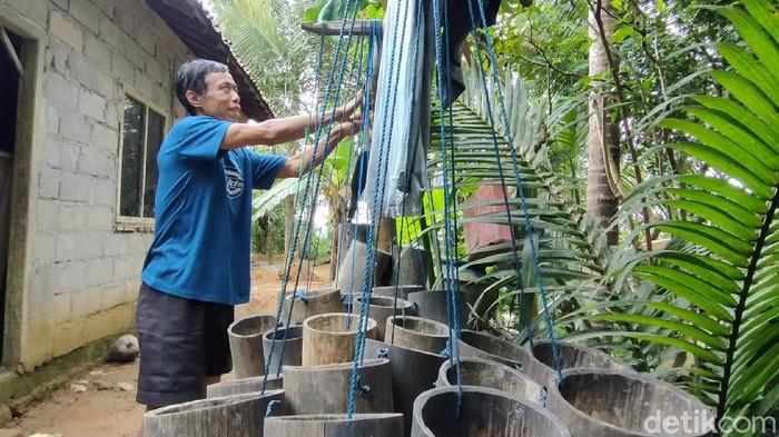 Parjan (51) penderes tunanetra di Kulon Progo ini mampu panjat 20 pohon kelapa sehari