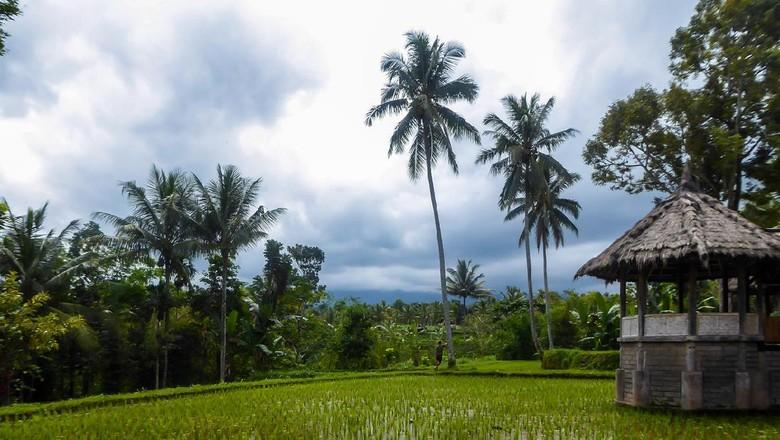 Desa Tetebatu resmi wakili Indonesia di ajang Desa Wisata Dunia