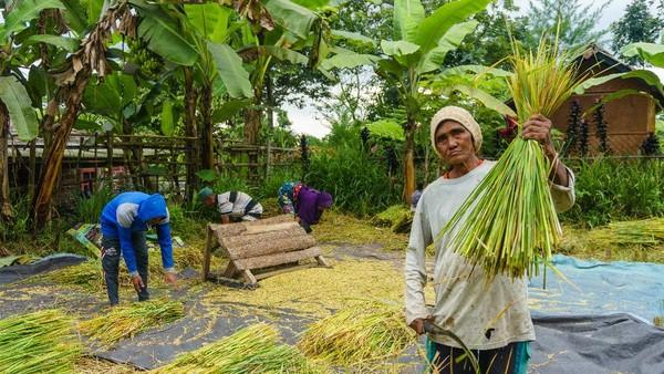 Desa Wisata Tetebatu kerap disebut Ubud-nya Lombok. Lokasinya sejuk karena berada di kaki Gunung Rinjani. Penduduknya juga ramah-ramah.
