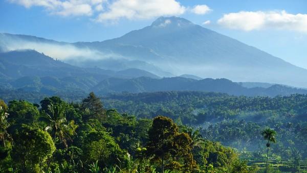 Traveler bahkan bisa melihat indahnya gunung Rinjani dari kejauhan. Buat para pehobi fotografi, desa Tetebatu jadi lokasi favorit buat berburu foto pemandangan alam.
