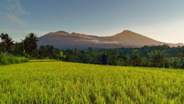 Desa Tetebatu dipastikan wakili Indonesia dalam ajang lomba best tourism village yang diselenggarakan oleh Organisasi Pariwisata Dunia Perserikatan Bangsa-Bangsa (UNWTO). Desa wisata ini terletak di Kecamatan Sikur, Kabupaten Lombok Timur, Nusa Tenggara Barat.