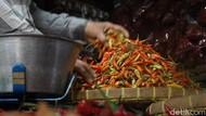 Produksi Melimpah Tapi Harga Cabai Anjlok, Ini Kata Dinas Pertanian Jatim