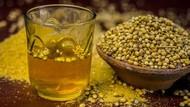 5 Manfaat Sehat Minum Air Ketumbar, Naikkan Imunitas dan Detoks Tubuh