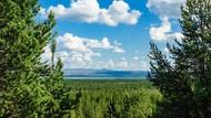 Jangan Pipis Sembarangan di Perbatasan Rusia, Bisa Didenda Rp 4,9 Juta