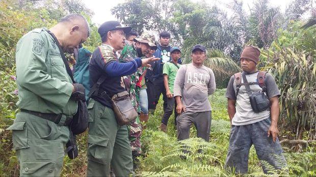 Tim BKSDA berupaya mengembalikan gajah ke kawanannya