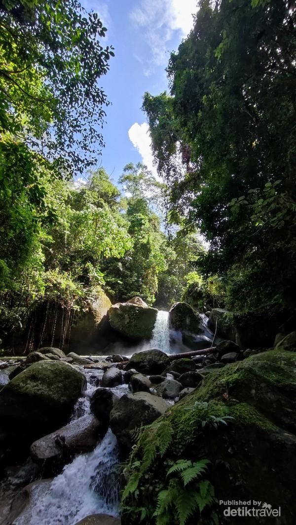 Di kelilingi hutan tropis