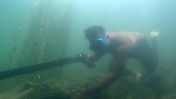 Pekerjaan memanah ikan tersebut dilakukan sejumlah nelayan di tepian danau.