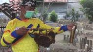 Melihat Budi Daya Lebah Madu di Kompleks Makam Tegal
