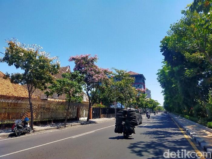 Bunga tabebuya di sejumlah jalan di Surabaya mulai bermekaran. Mekarnya bunga tabebuya membuat Kota Surabaya semakin indah.