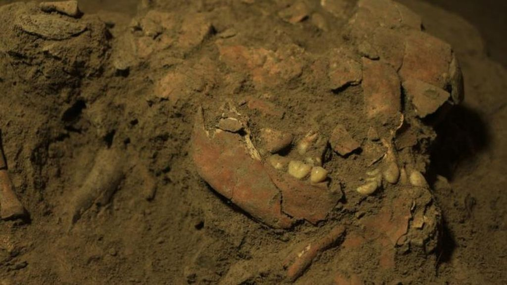 Fosil Remaja Purba Toalean di Sulawesi Ungkap Hubungan DNA dengan Penduduk Asli Australia
