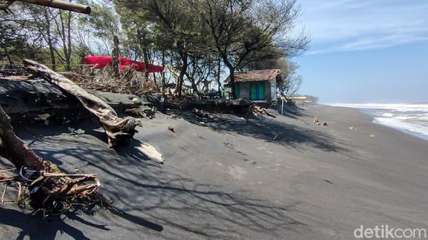 Dulu, jarak antara tempat penetasan penyu ke pantai dulunya mencapai 1 km. Namun sejak 3 tahun lalu, abrasi memangkas jarak, sehingga kini tinggal berkisar 5 meter saja. Tempat ini butuh segara direlokasi. (Jalu Rahman Dewantara/detikTravel)