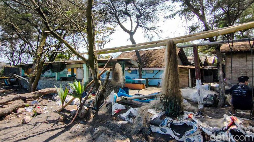 Terancam Abrasi, Konservasi Penyu Pantai Trisik Kulon Progo Butuh Direlokasi