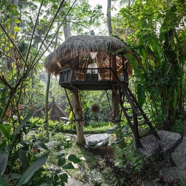 Buat kamu yang ingin glamping dengan nuansa alam indah khas Bali, cobalah glamping di Bali Dacha. Dikelilingi pepohonan yang rindang, atmosfer ini tentunya akan membuat kamu merasakan ketenangan (dok Bali Dacha)