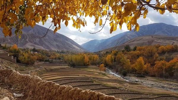 Pendudukan Afghanistan oleh Taliban kian membuat publik bertanya-tanya. Khususnya setelah seorang penyanyi lagu rakyat bernama Fawad Andarabi tewas dibunuh oleh rezim yang menyebut membawa perubahan itu (Twitter)