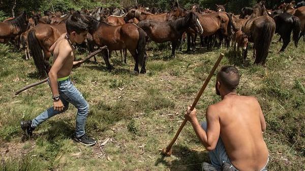 Acara ini menjadi upacara yang melambangkan interaksi mulia manusia dan kuda.