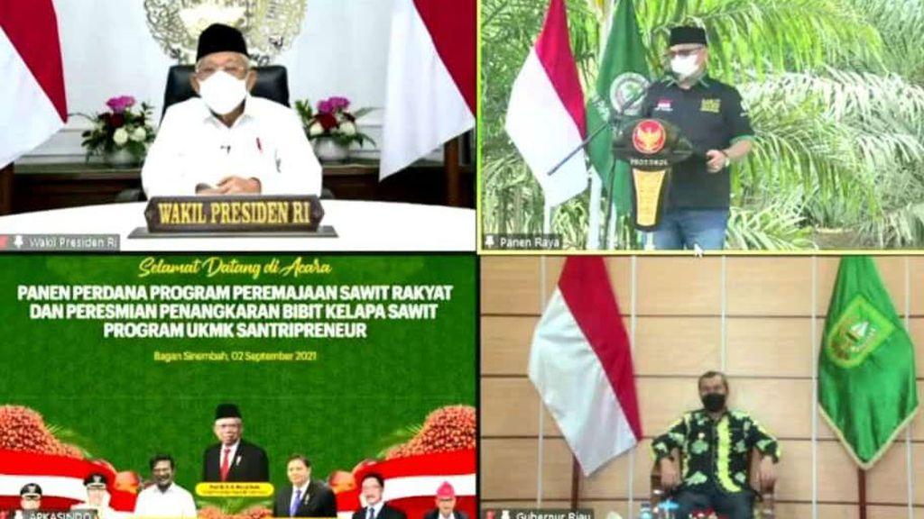 Petani Minta Wapres Maruf Bangun Pabrik Kelapa Sawit di Riau