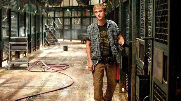 Deretan penampilan Tom Felton di berbagai film.