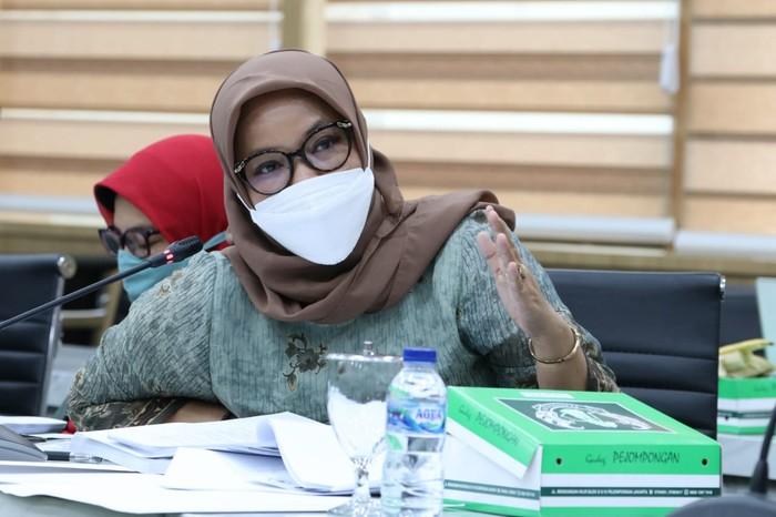 Anggota Komisi XI DPR  PKB Ela Siti Nuryamah