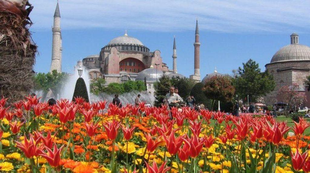 Ada Apa Nih? Pejabat RI dan Pertamina Cs Ramai-ramai ke Turki