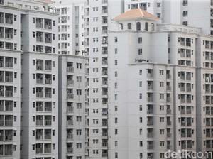 Viral Apartemen Dipenuhi 19 Tarantula & Ular Usai Ditinggalkan Penyewa