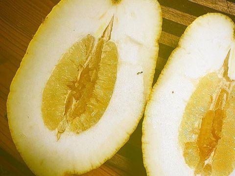 Lemon berukuran jumbo seberat 2,6 kilogram ditemukan di Australia