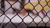 Saat Alat Bantu Seks Ikut Panaskan Duel MMA Wanita