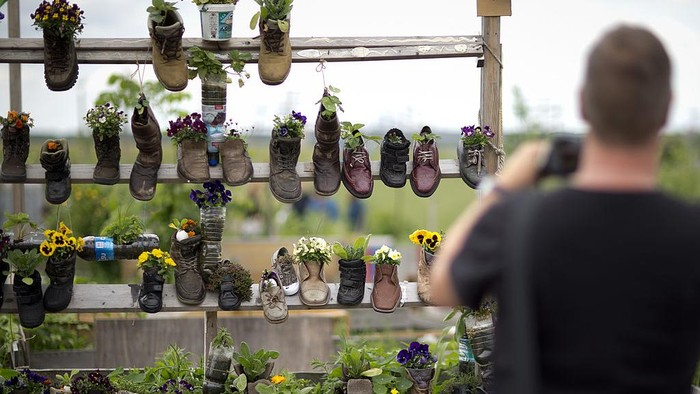 BERLIN, GERMANY - MAY 24: Flowers are planted in shoes in the park Tempelhofer Feld on  in Berlin, Germany. The city is planning to allow development for the construction of new apartment buildings on the edges of the park, while grassroots activists are seeking to block any development at all of the former airport property located in the city center with a referendum to be held May 25. (Photo by Axel Schmidt/Getty Images)