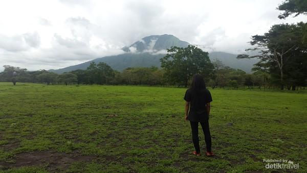 TNB juga merupakan padang savana terluas yang ada di Pulau Jawa.