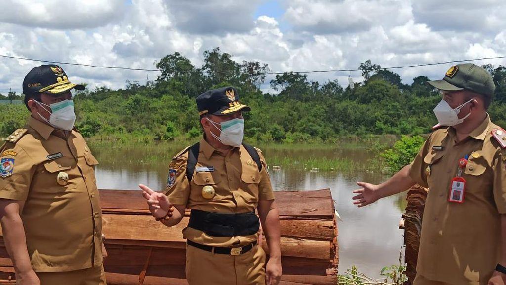 Pemprov Kalteng Minta KLHK Koordinasi soal Izin Penebangan Hutan