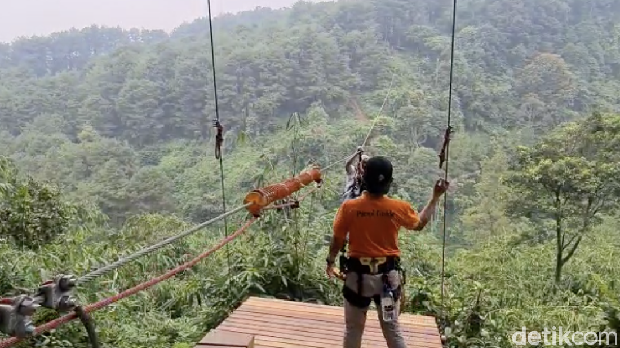 Bogor Tree Top