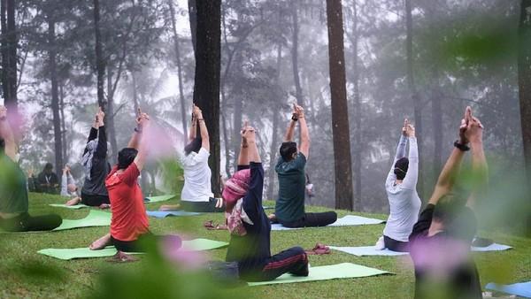Selain itu, kata Sandiaga, Bali juga menjadi salah satu sasaran wisatawan untuk menikmati wellness tourism dan herbal tourism. Bahkan, banyak wisatawan mancanegara yang berkunjung ke Bali untuk merasakan wisata berbasis wellness dan herbal tourism.