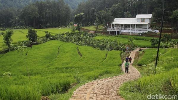 Sama seperti namanya, trekking di Hutan Hujan Sentul menawarkan sensasi perjalanan menjelajahi hutan sembari membakar kalori.