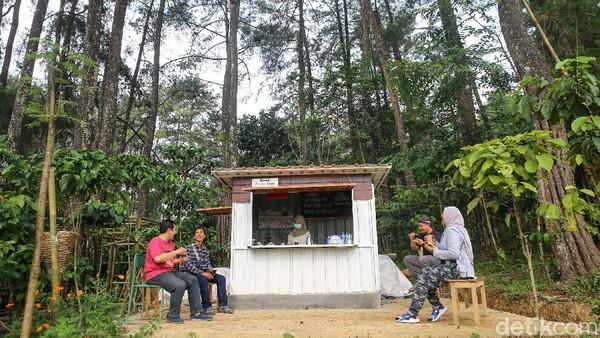 Berbagai kegiatan dapat dilakukan di hutan ini, bersepeda di dalam hutan, menikmati hijaunya tanaman padi dan kebun bunga, menikmati makanan dari resto Lumbung Padi.