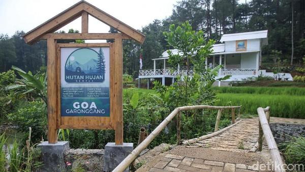 Hutan Hujan Sentul di Kabupaten Bogor, bisa menjadi pilihan alternatif bagi travelerJabodetabek untuk mengisi akhir pekan.