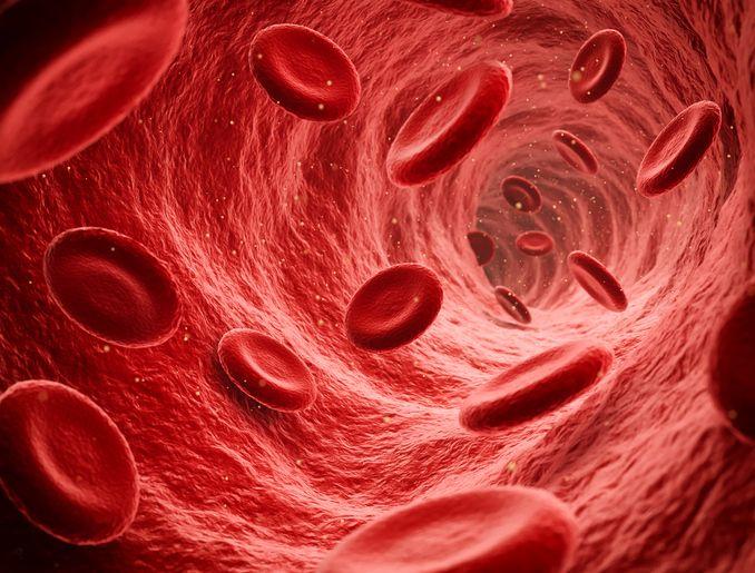 Darah Haram Dikonsumsi tetapi Ada Kisah Sahabat Nabi Minum Darah Rasulullah SAW