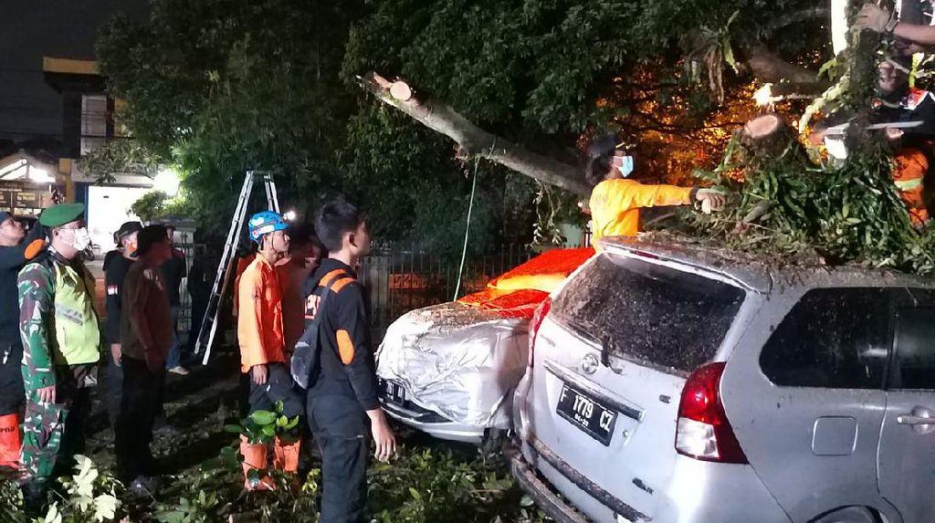 4 Mobil Ringsek Tertimpa Pohon Tumbang di Gunungbatu Bogor