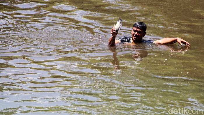 Hingga kini Sungai Bengawan Solo masih tercemar oleh limbah ciu. Kondisi limbah yang mencemari Bengawan Solo pagi ini lebih parah dari sebelumnya.