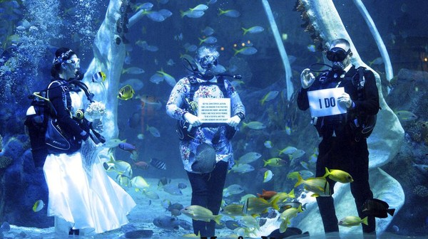 Lisa Huggins dan Chris Jackson bertukar sumpah selama upacara pernikahan bawah air mereka di Bear Grylls Adventure, di Birmingham, Inggris, Rabu (8/9/2021) waktu setempat.