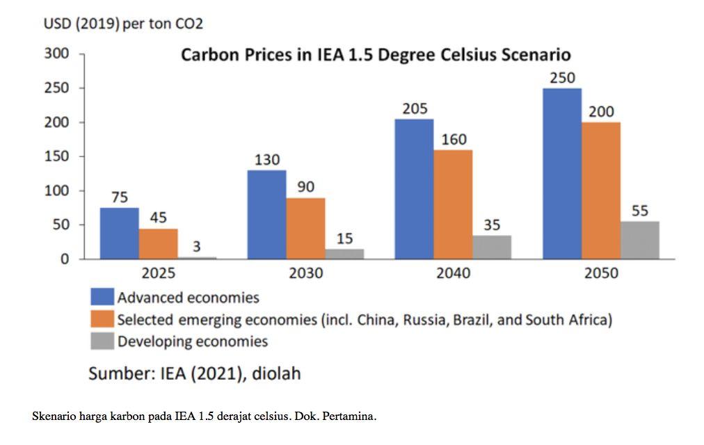 Tabel harga karbon. (Dok: Pertamina)