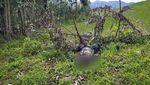Konflik di Ethiopia, Mayat Dibiarkan Berserakan di Ladang