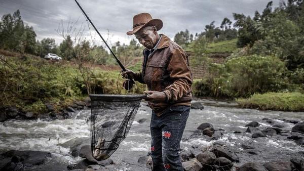Padahal Kenya punya klub memancing tertua di Afrika. Namanya Klub Kenya Fly Fishers, yang telah berusia 102 tahun di Mathioya. Klub ini telah menyambut lebih banyak anggota warga asli Kenya karena minat telah tumbuh. Mereka juga telah memilih ketua kulit hitam pertamanya pada tahun 2018. (Luis Tato/AFP)
