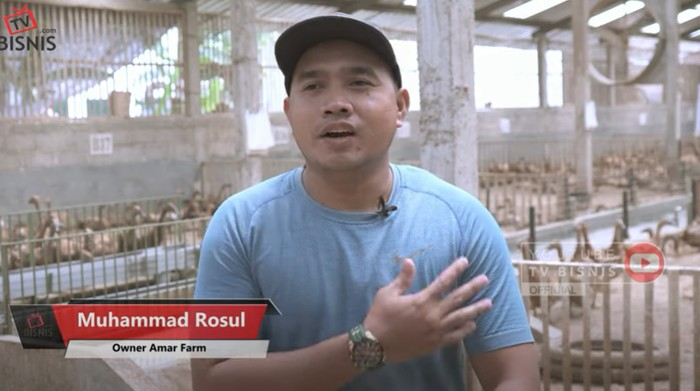 Pulang Kampung, Pria Ini Sukses Jadi Peternak Bebek yang Jual 200 Ribu Butir Telur Sebulan
