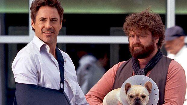 Film-film komedi yang dimainkan Robert Downey Jr.