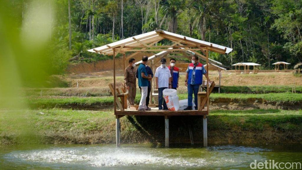 Desa Wisata Koto Masjid