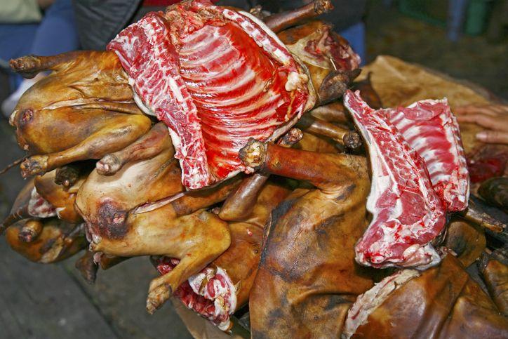 5 Cara Membedakan Daging Anjing dan Daging Sapi Supaya Tak Tertipu